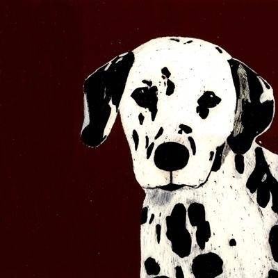dog, blackandwhite, dalmatian - robincottage | ello
