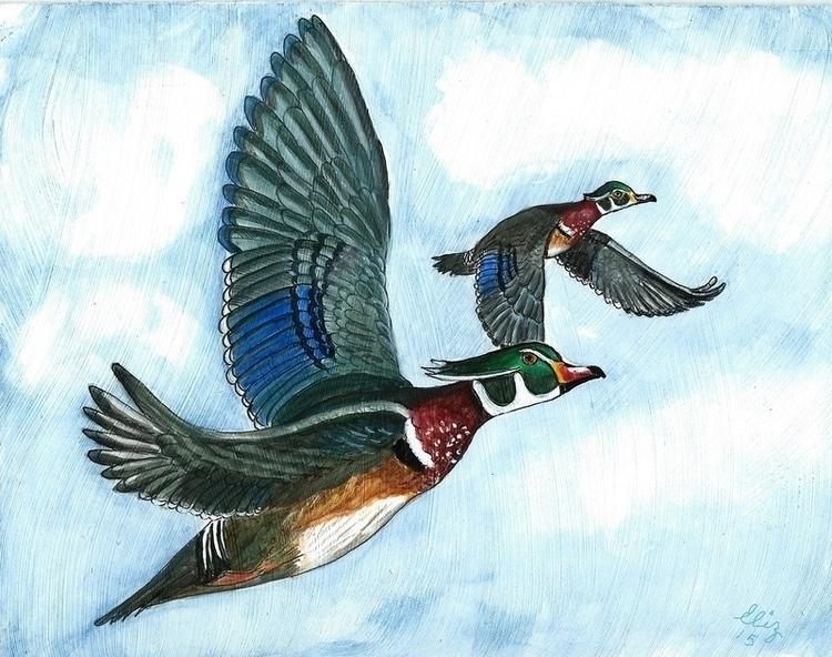 Wood Ducks flight Acrylics wate - artistinme4ever | ello