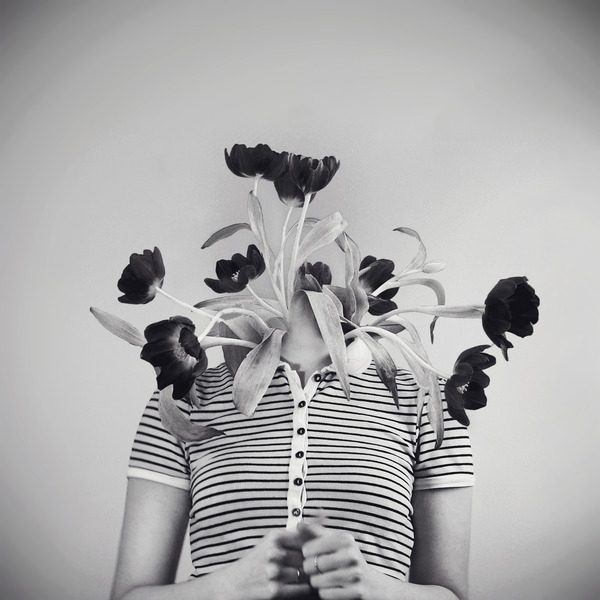James McKenzie - bloom, flowers - jamesmckenzie | ello