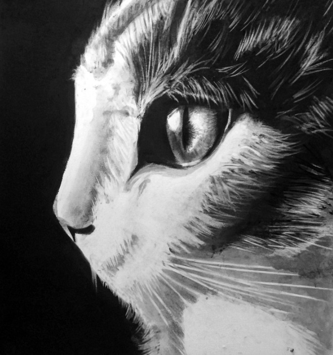 Observant - Charcoal Drawing - joshemanuel | ello