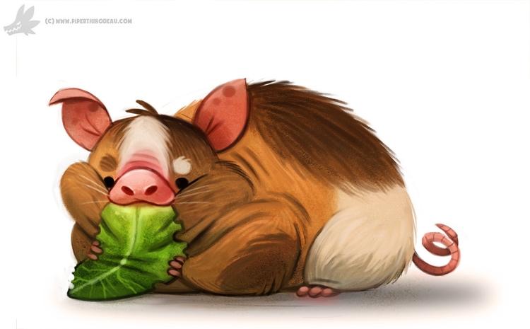 Daily Painting Guinea Pig - 937. - piperthibodeau | ello