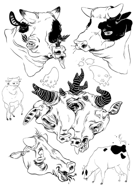 Cows - cow, drawing, sketchbook - mjarvis-5786 | ello