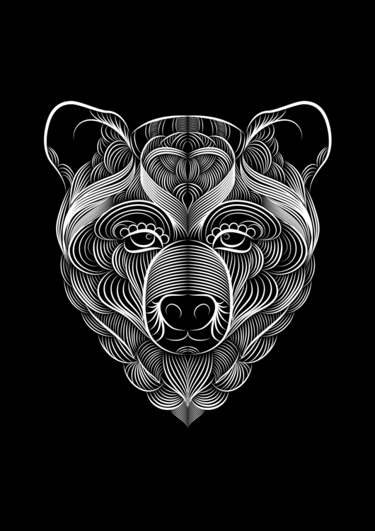 details - illustration, illustrator - borjafernandez | ello