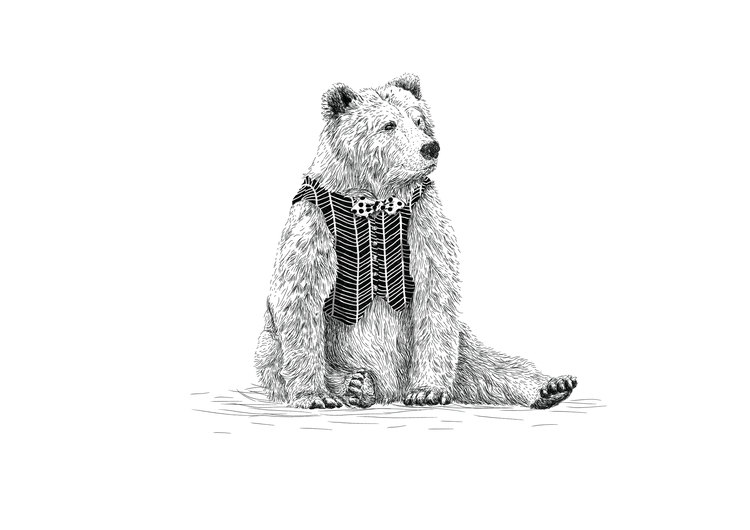 illustration, bear, children'sillustration - oliverrobertholmes | ello