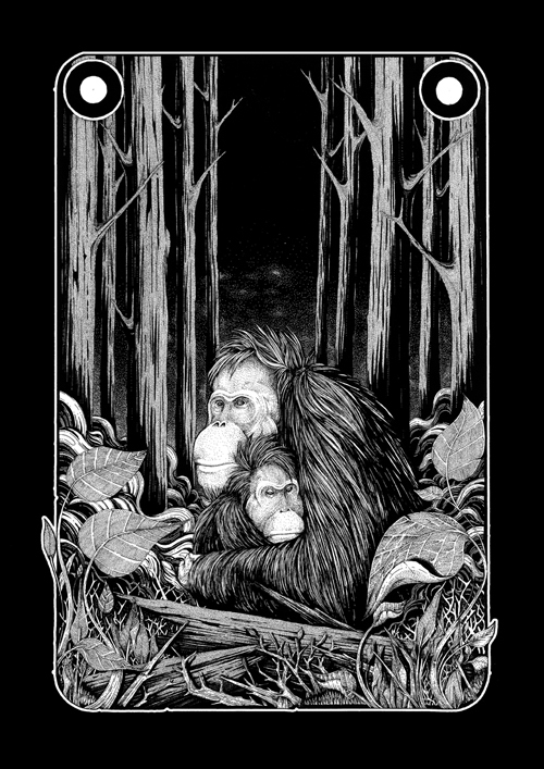 ORANG UTAN Ink paper 2013 - #illustration - iannocent | ello