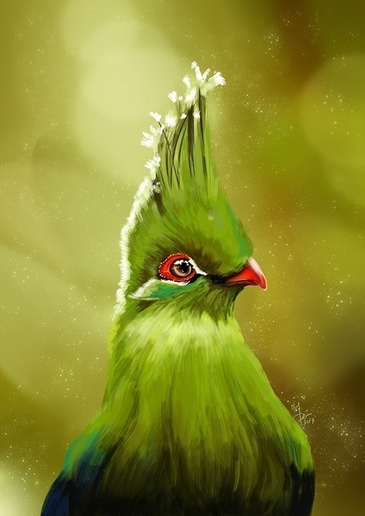 Turaco - hmremi, illustration, painting - hmremi | ello