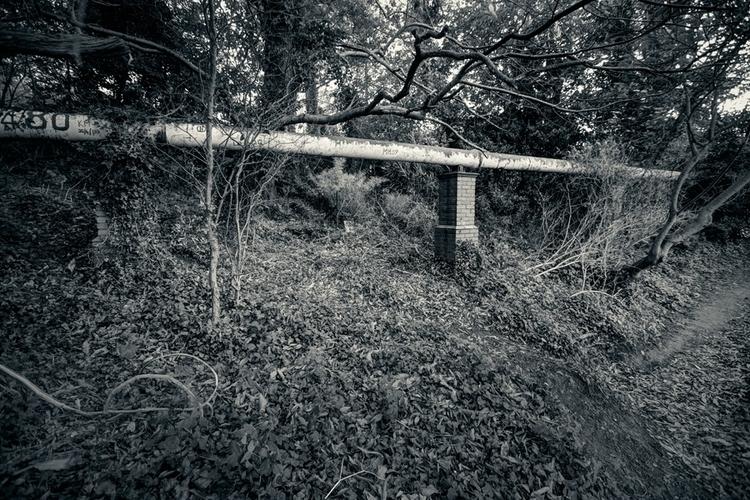 unintended installation - blackandwhite - fotografpm | ello