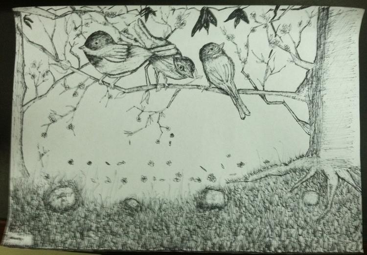 Birds - paultran-2295 | ello
