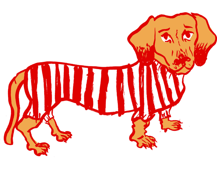 Sausage dog, original illustrat - sophieheywood | ello