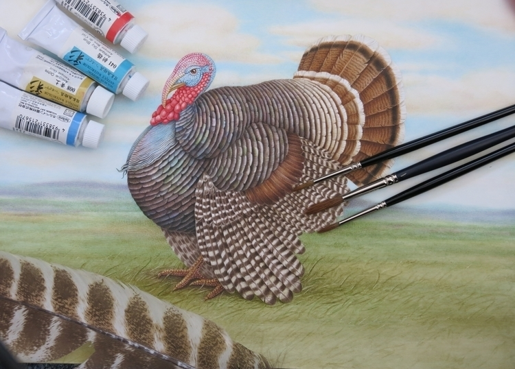 turkey painted watercolor - illustration - karenkluglein | ello