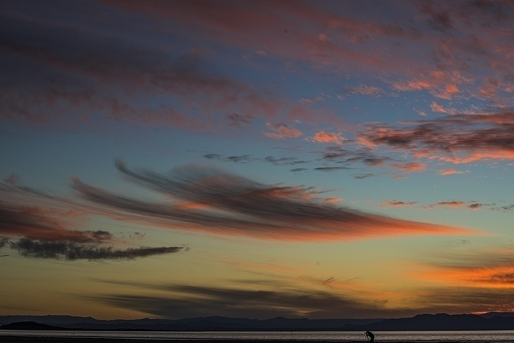 photographer - saltonsea, california - frankfosterphotography | ello