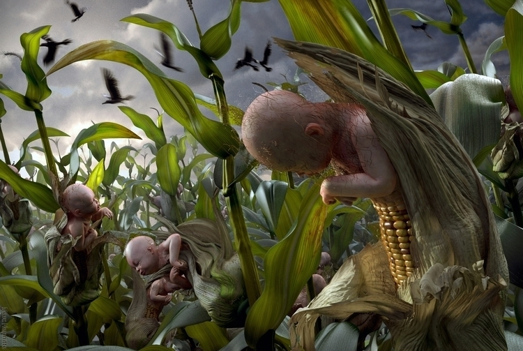 Inspired GMO company - marchermitte | ello