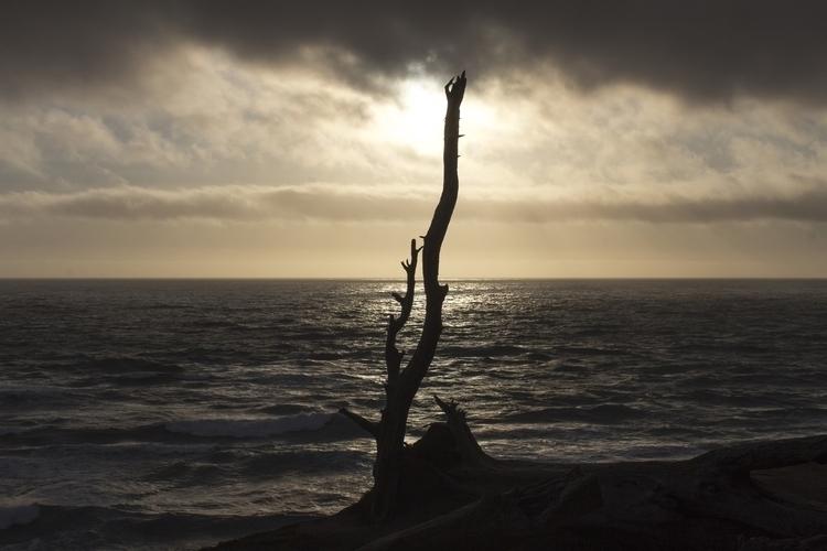 photography, nature, sunset, dramatic - stephenkeller | ello