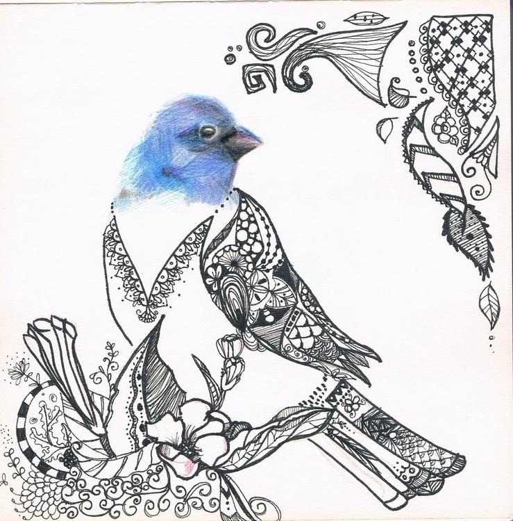 Bluebird midst Decided experime - cephier   ello