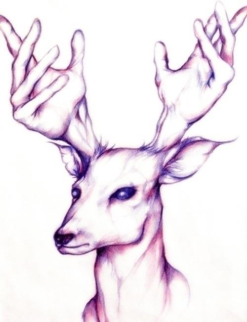 deer handlers - animal, antlers - jeremieduval | ello