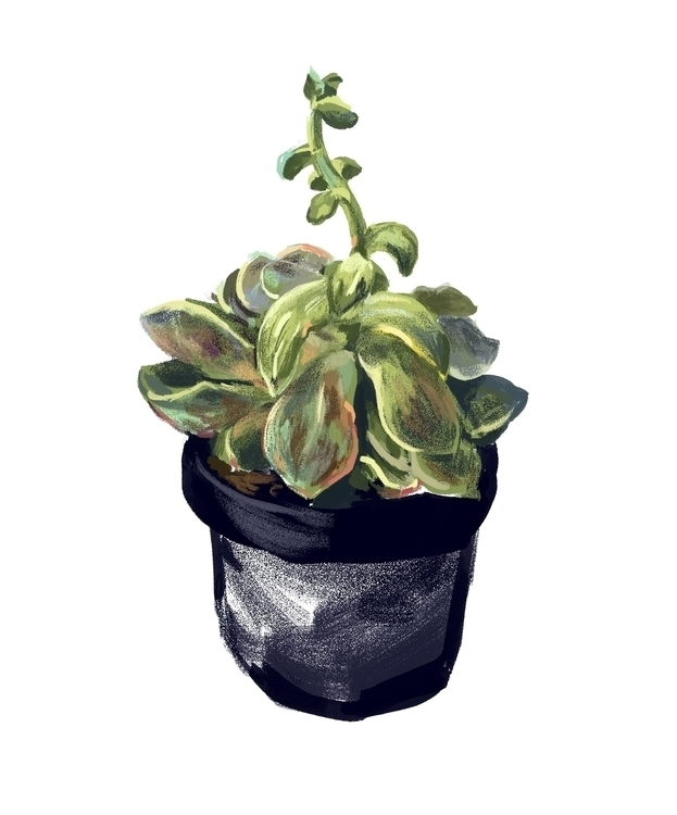 Cactus Spitpaint Day 8 - cactus - mirako-8379 | ello