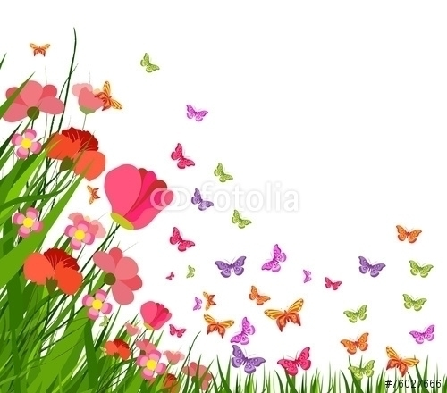spring flower butterfly - illustration - ngocdai86   ello