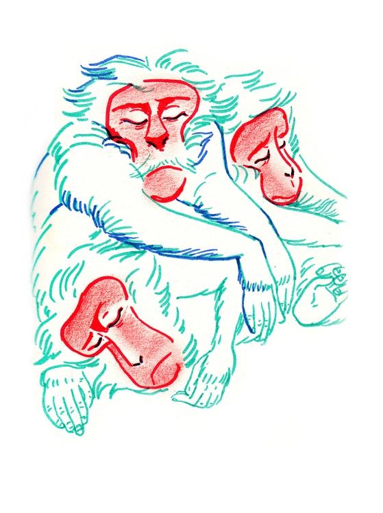 illustration, sketch, monkey - anelia | ello
