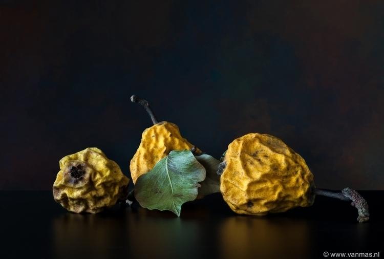 Stilleven met gedroogde peren - stilllife - vanmas | ello