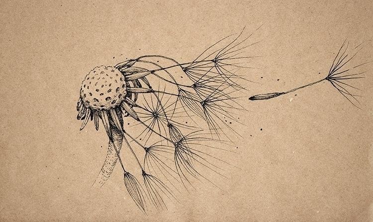 Wind - illustration, drawing, ink - aleksklepnev   ello
