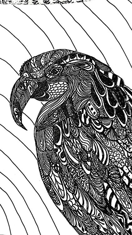 Zen Tangled Parrot - carolinelifshey | ello