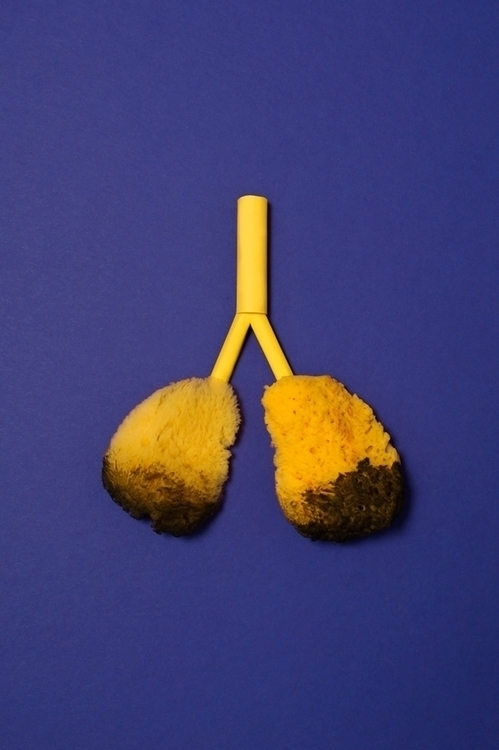 lungs, smoking, disease, paperart - carolin_wanitzek | ello