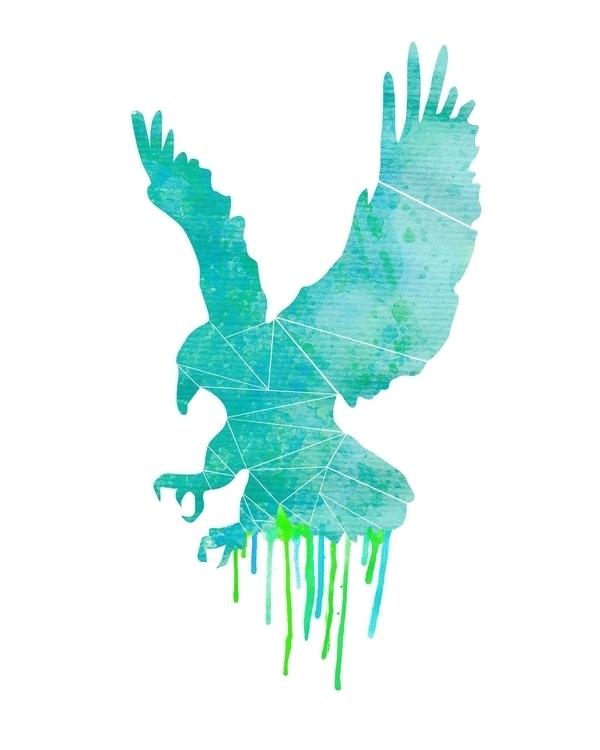 hawk - watercolor - illustration - sophierousseau | ello