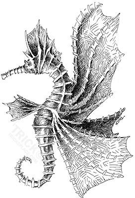 Skyhorse - skyhorse, seahorse, seahorse - trick-6303 | ello