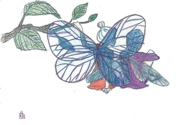 conversation wings - illustration - serenedaoud   ello