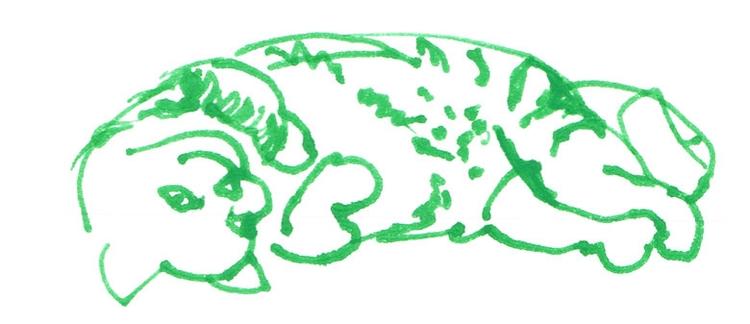 drawing - fatma-5606 | ello