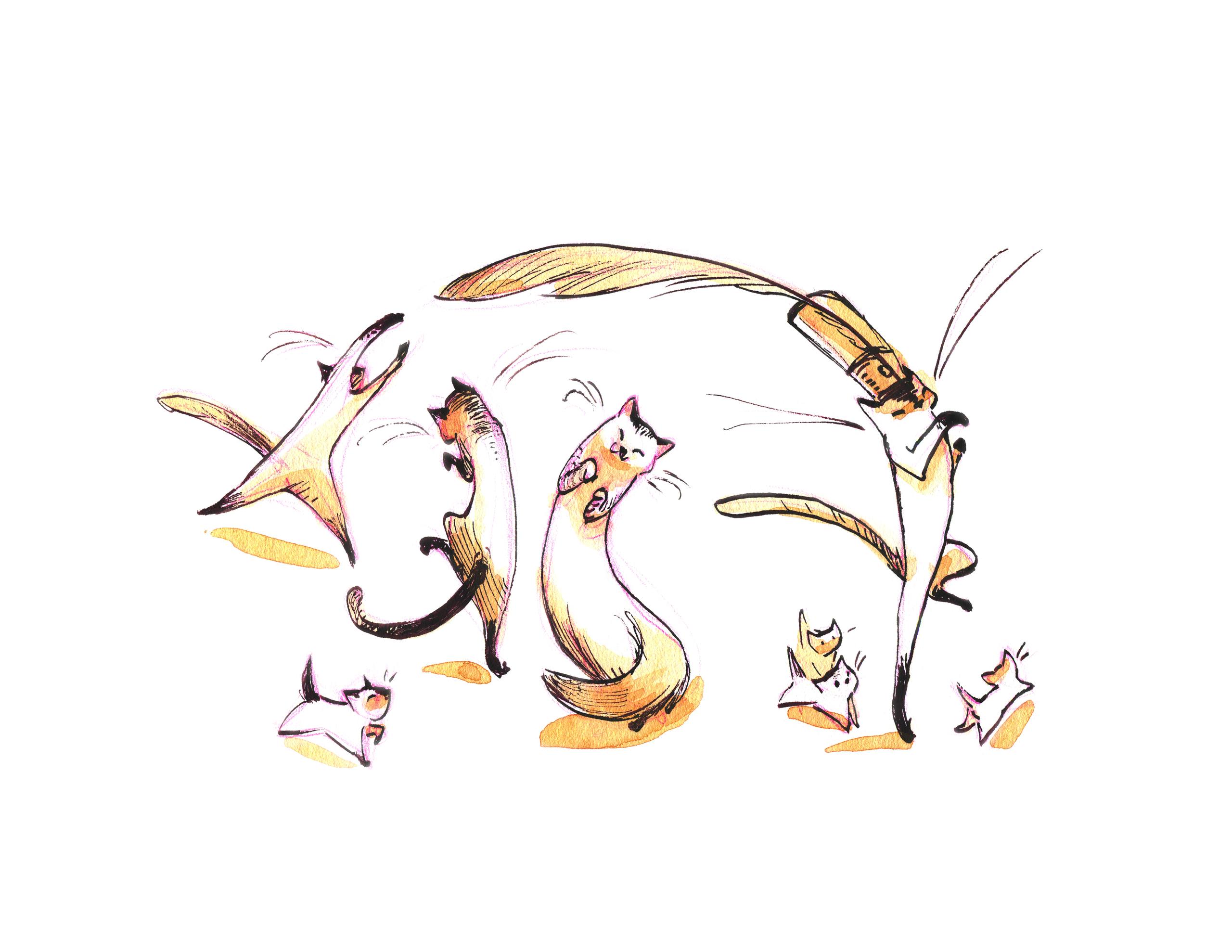 Cat Parade - cats, penink, caseyrobin - caseyrobin | ello