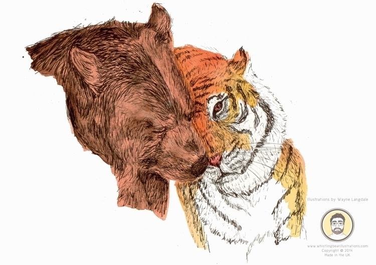 Illustration Bear Tiger project - whistlingbear | ello