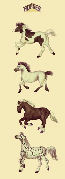 Horses - efiolin | ello
