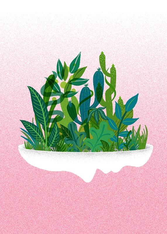 Planter - plants, face - stephaniekubo-8873   ello