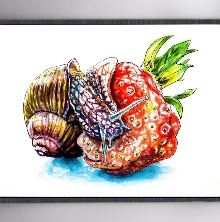 Snail Strawberry - watercolor, watercolour - doodlewash | ello