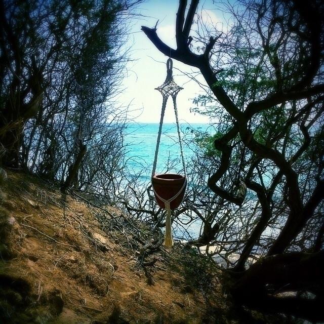 calm enjoy view :ocean::sunny:️ - wovenhawaii | ello