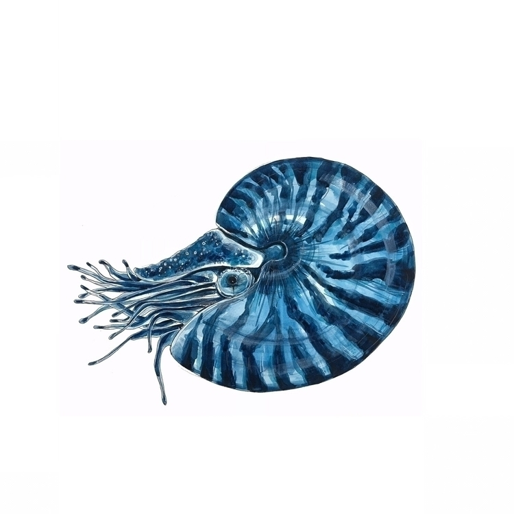 blue, nautical, design, coastal - aliellydesign   ello