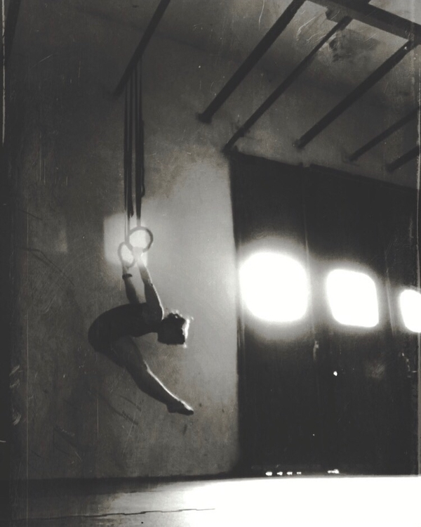 hang - rings, skinthecat, movement - yogiwod | ello