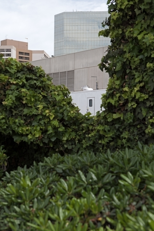 Hotels Foliage 98th St, LAX Dou - odouglas | ello