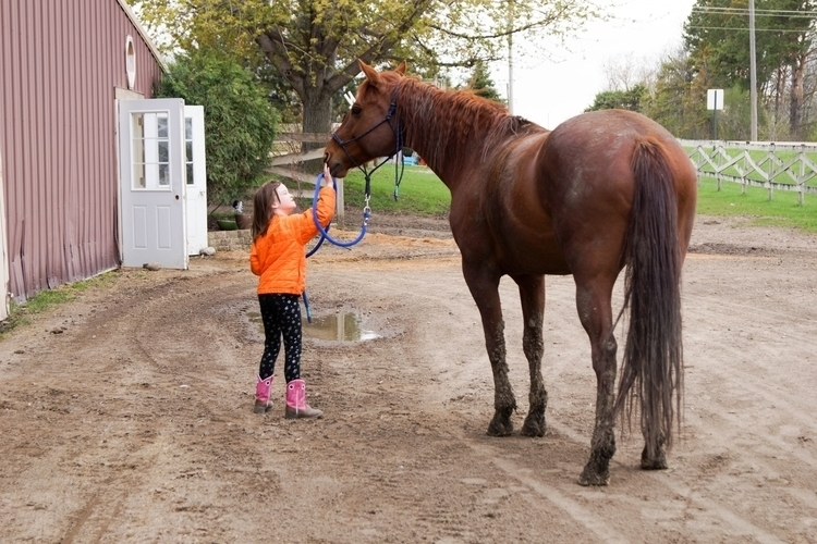 Girl loves horse #photography - people - tobecooked | ello