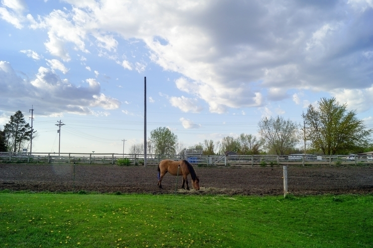 Cloudy blue sky horse ranch - photography - tobecooked | ello