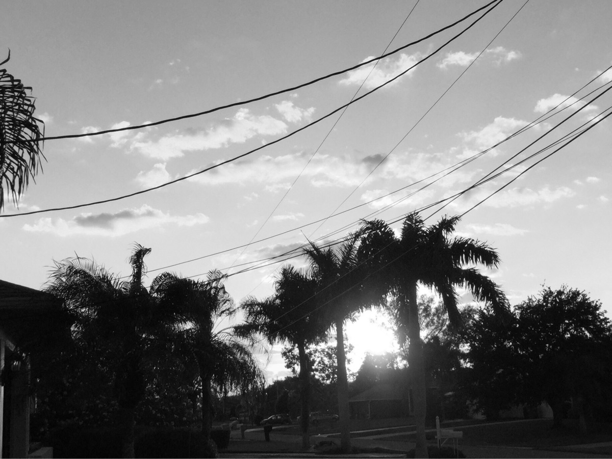 Sunset Apps - mikefl99, ello, black - mikefl99 | ello