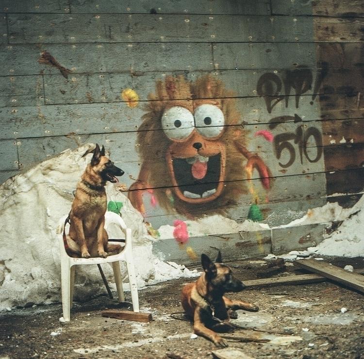 bipgraffiti, ellofilmphotograhy - teetonka | ello
