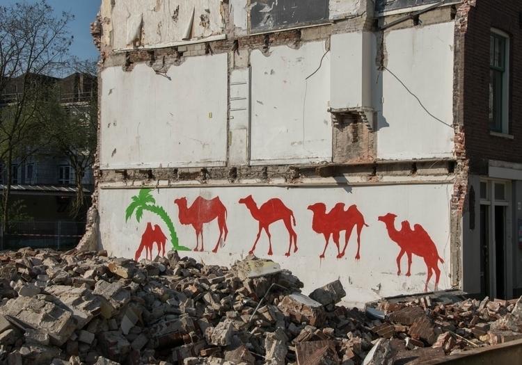renovating, city council decide - nynkedeb | ello