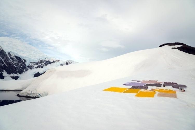 Antarctic Biennale: art world R - anaispaws | ello