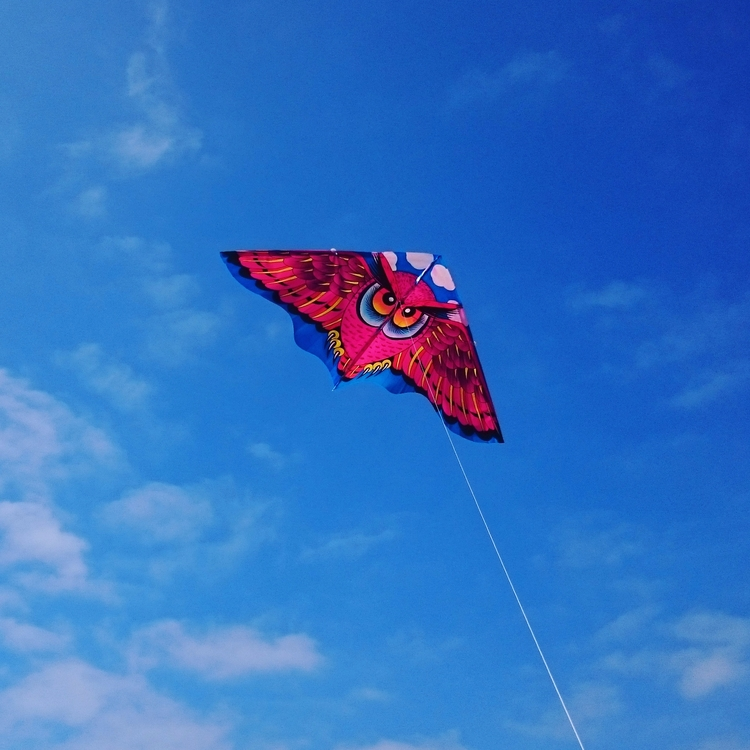 Bright kite - catchphrasedan | ello