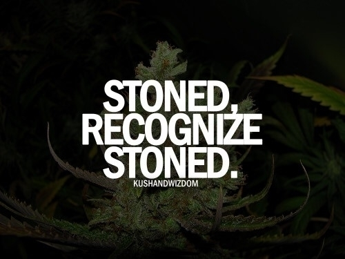 cannabis, facts, stoned, truth - chronic-meme-village | ello
