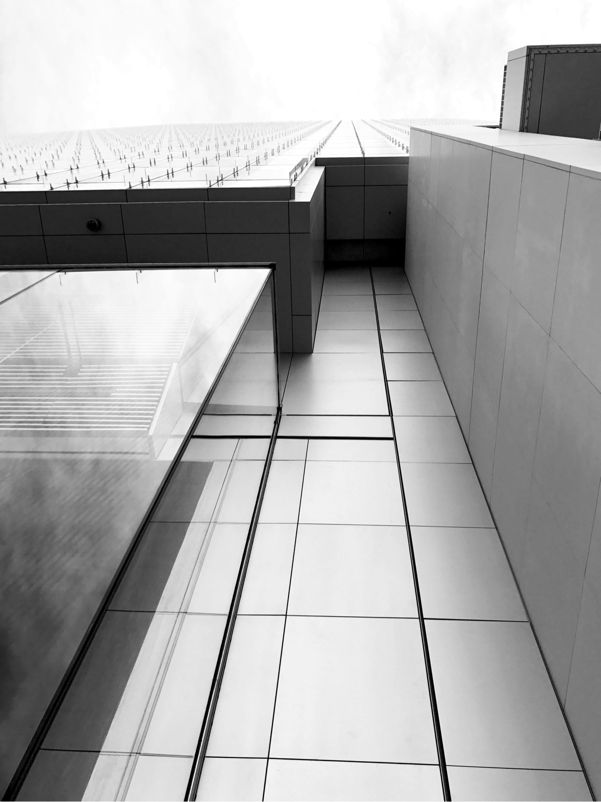 Lines Points - grantallen | ello
