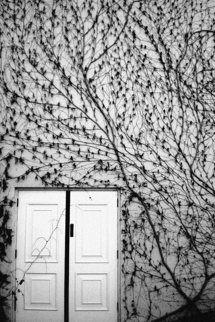 Mitch Cullin - ellophotography, ellophotographer - mitchcullin | ello