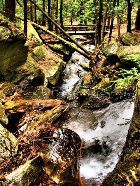 Water, Hub Life. Water mater ma - natureisfree | ello